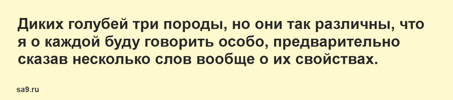 Голуби – рассказ Аксакова, онлайн бесплатно