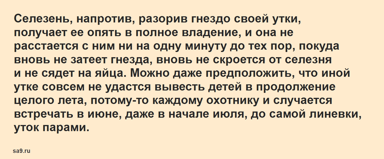 Рассказ Аксакова - Утки, для детей читать текст полностью