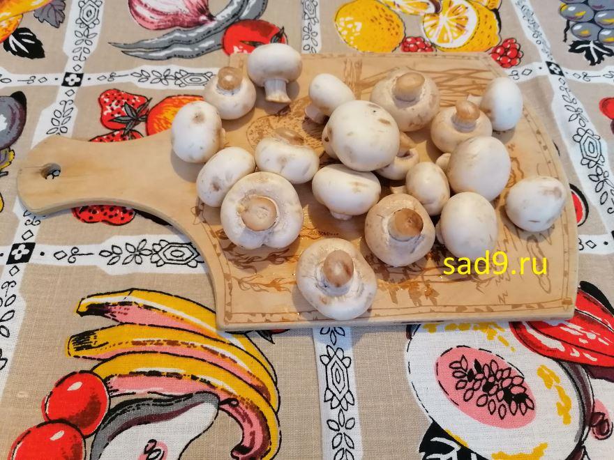 Курица с грибами и сыром, вкусный и простой рецепт