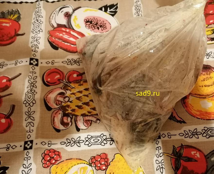 Вкусный и простой рецепт приготовления красной рыбы в духовке, с фото пошагово