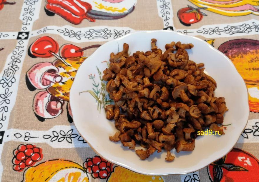 Ризотто с грибами рецепт с фото пошагово