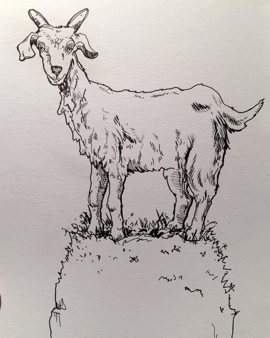 Сказка Упрямый козел, Мамин-Сибиряк