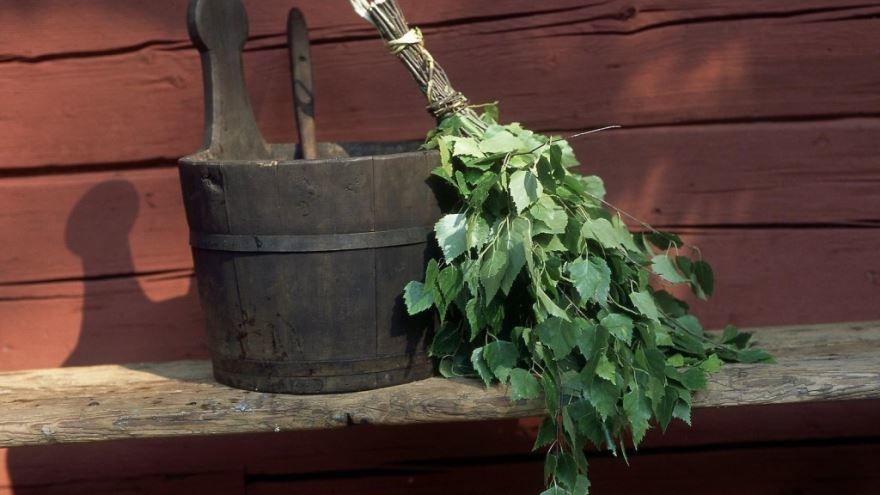 Фото березового веника для бани
