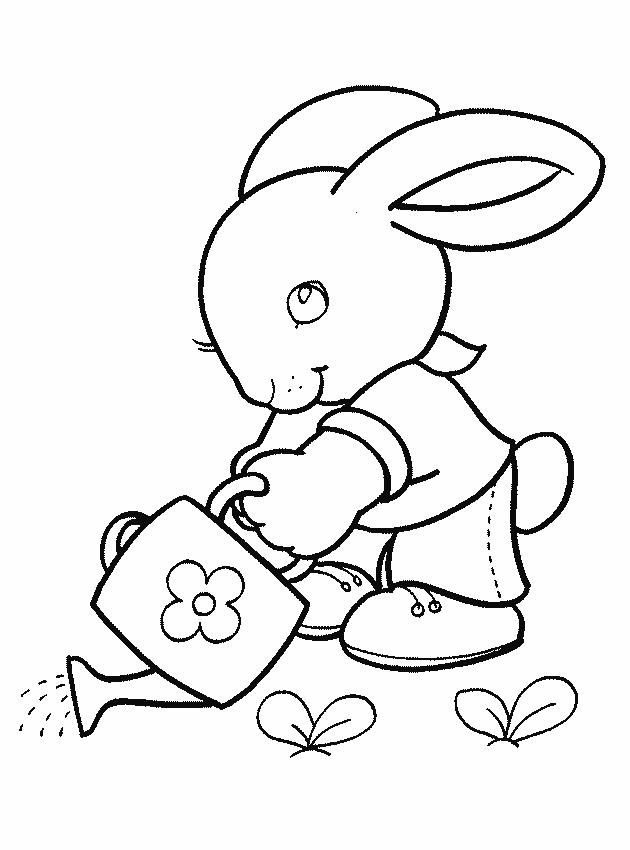 Раскраска для девочек 3 лет - зайчик