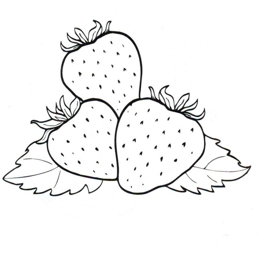 Раскраска для девочек 4 лет - ягоды