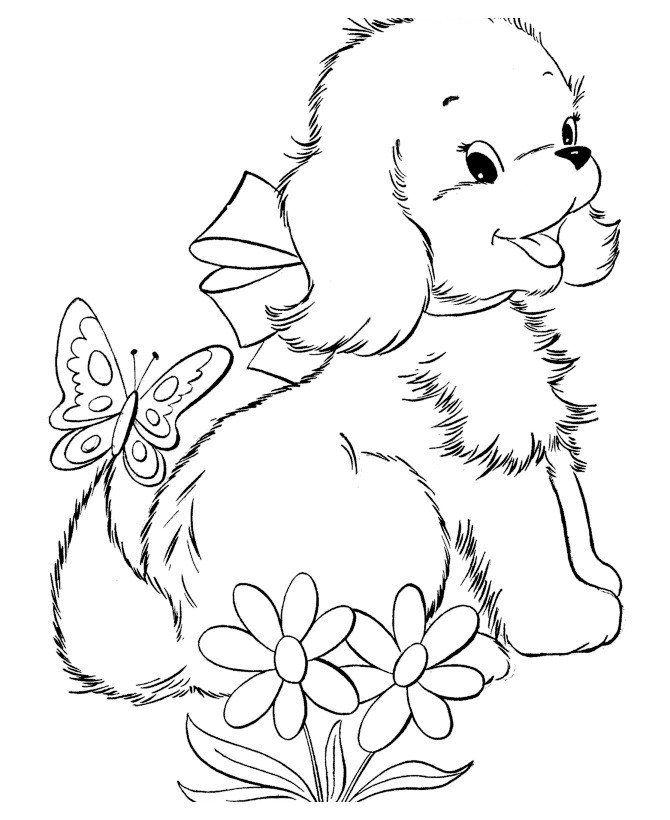 Раскраска для девочек 7 лет - щенок