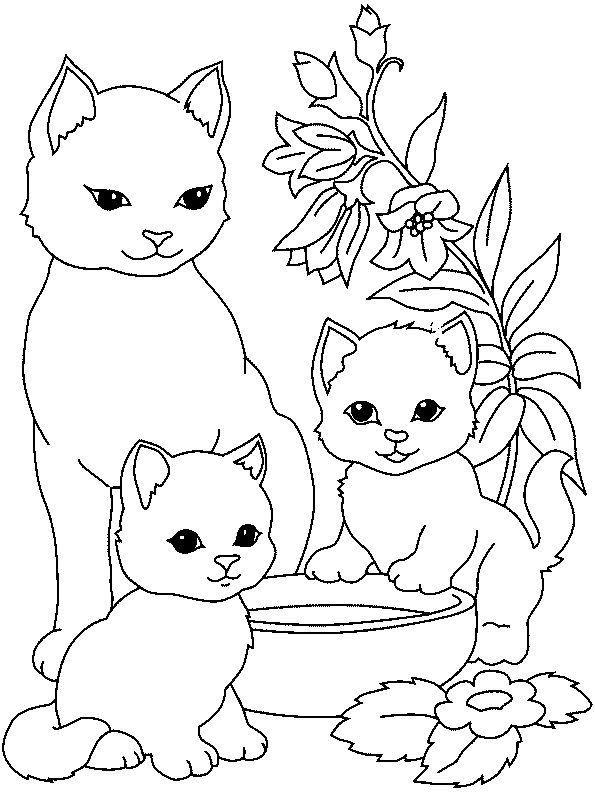 Раскраска для девочек 7 лет - котята