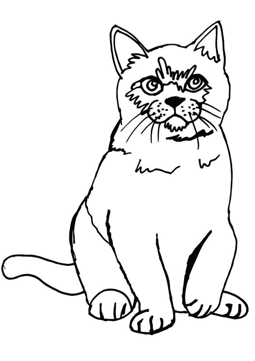 """""""Кот"""" раскраски для детей. Скачать и распечатать онлайн ..."""