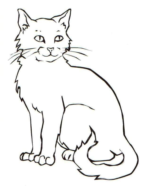 Распечатать раскраску - кот, для детей