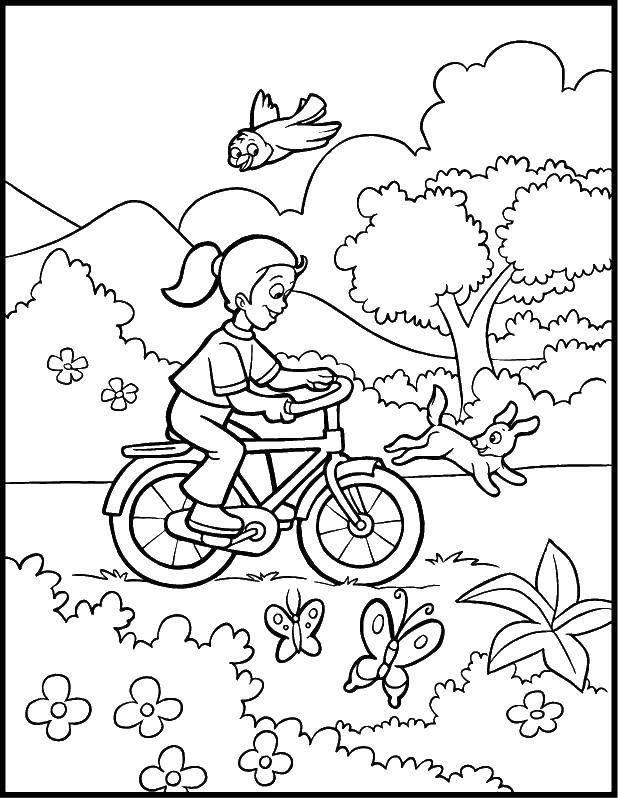 Раскраски для детей - Лето