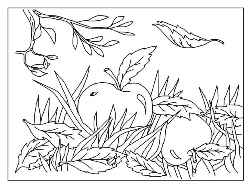 Золотая осень раскраска для детей