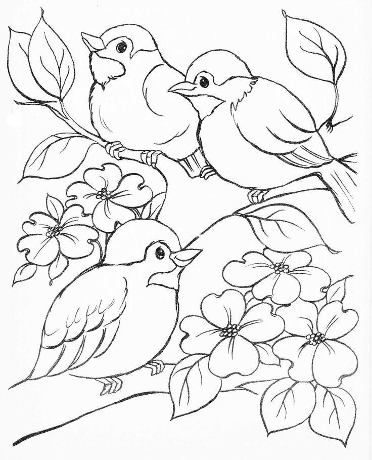 Раскраска птицы для детей