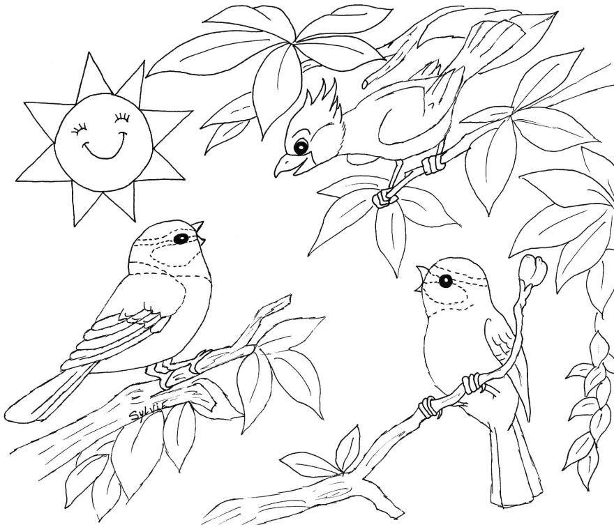 Скачать раскраску птицы, для детей