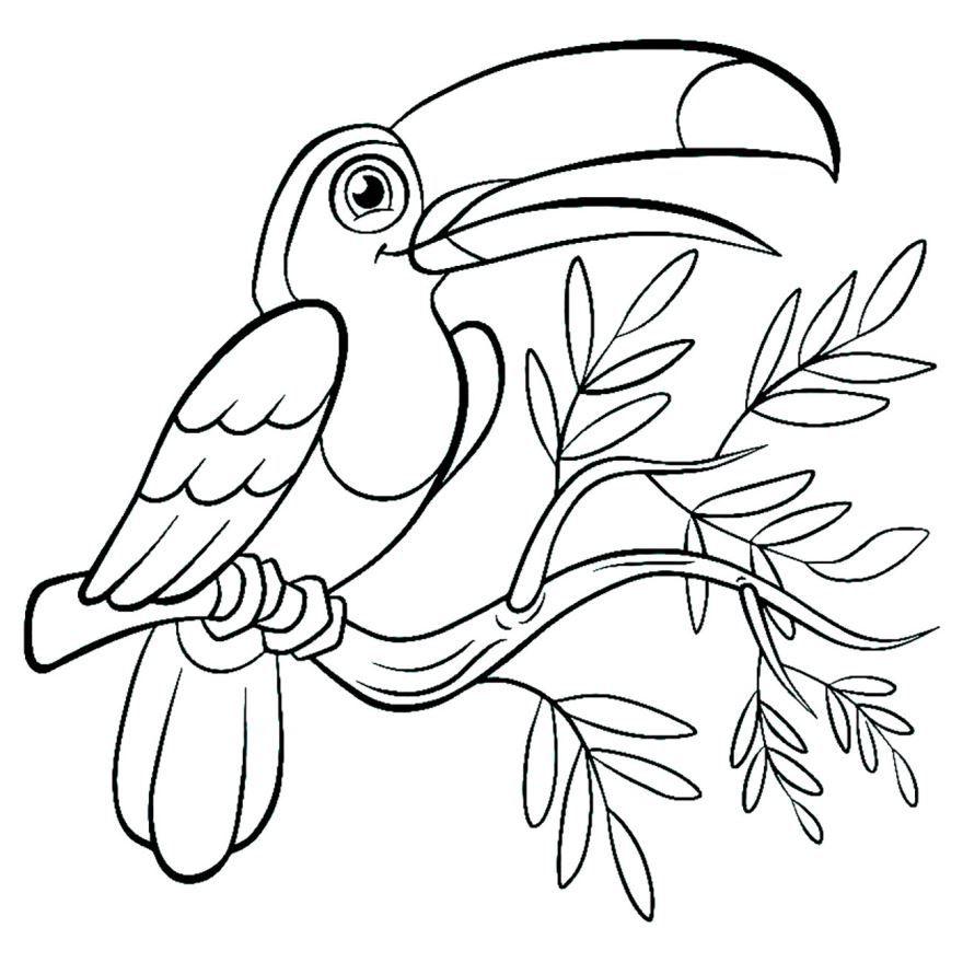 Скачать и распечатать раскраску - Птицы