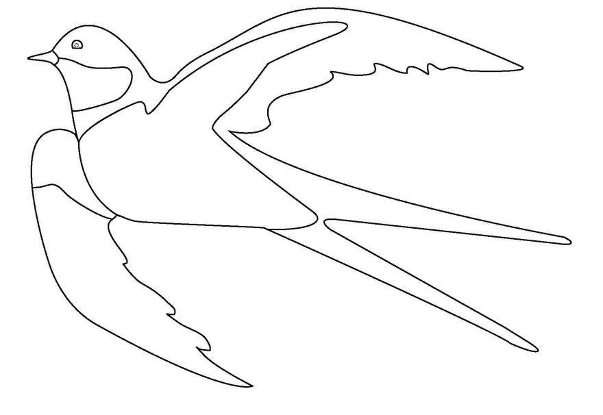 Раскраска для детей - птицы Ласточка