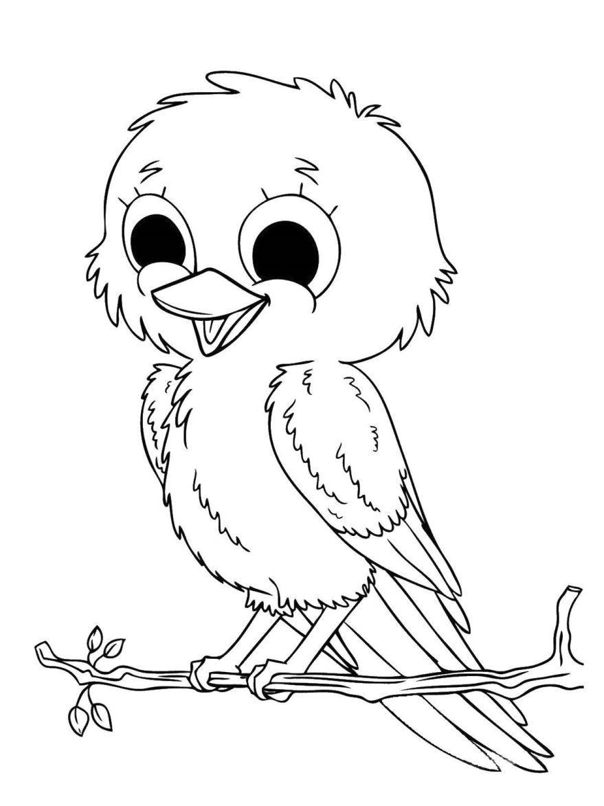 Раскраска птицы, распечатать
