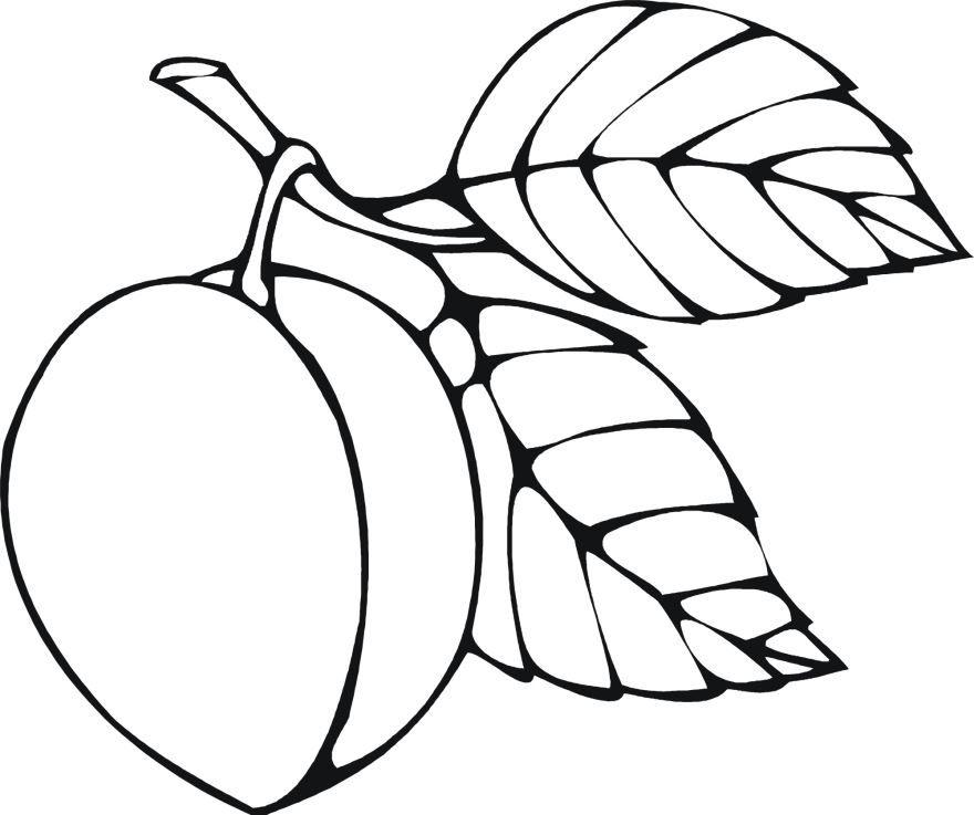 Распечатать раскраски фрукты для детей разного возраста