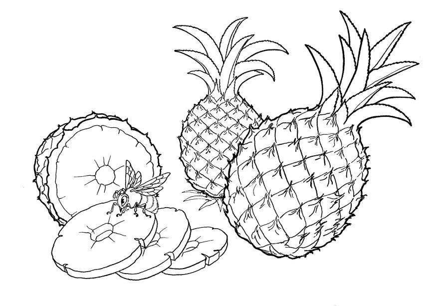 Фрукты раскраска для детей - ананас