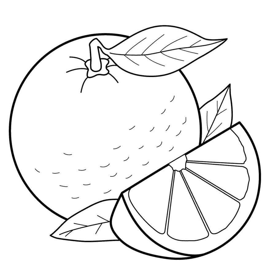 Фрукты раскраска для детей - апельсин