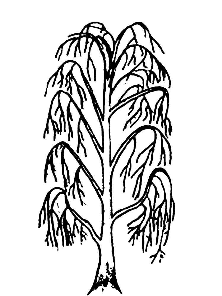 Раскраска дерево, для детей онлайн бесплатно