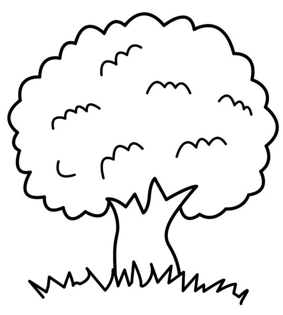 Картинка раскраска дерево, для детей