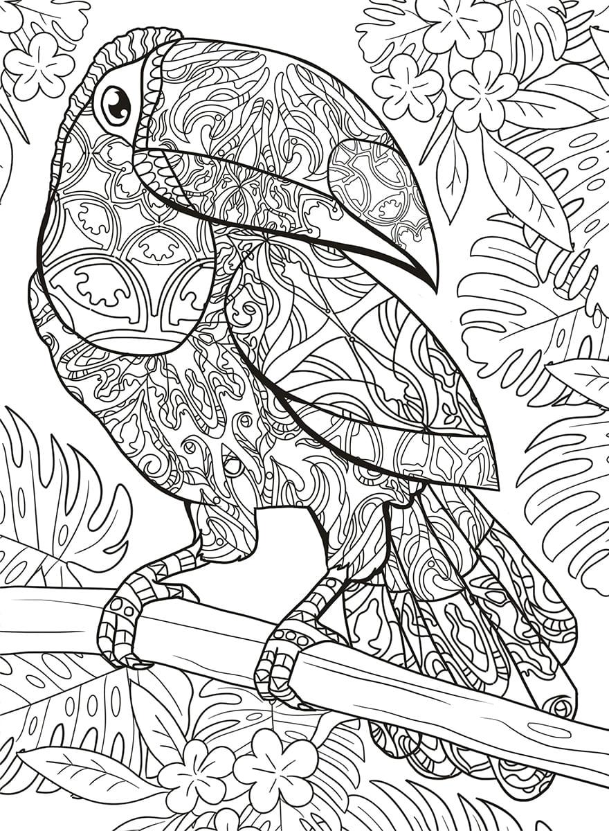 Раскраски антистресс - птицы