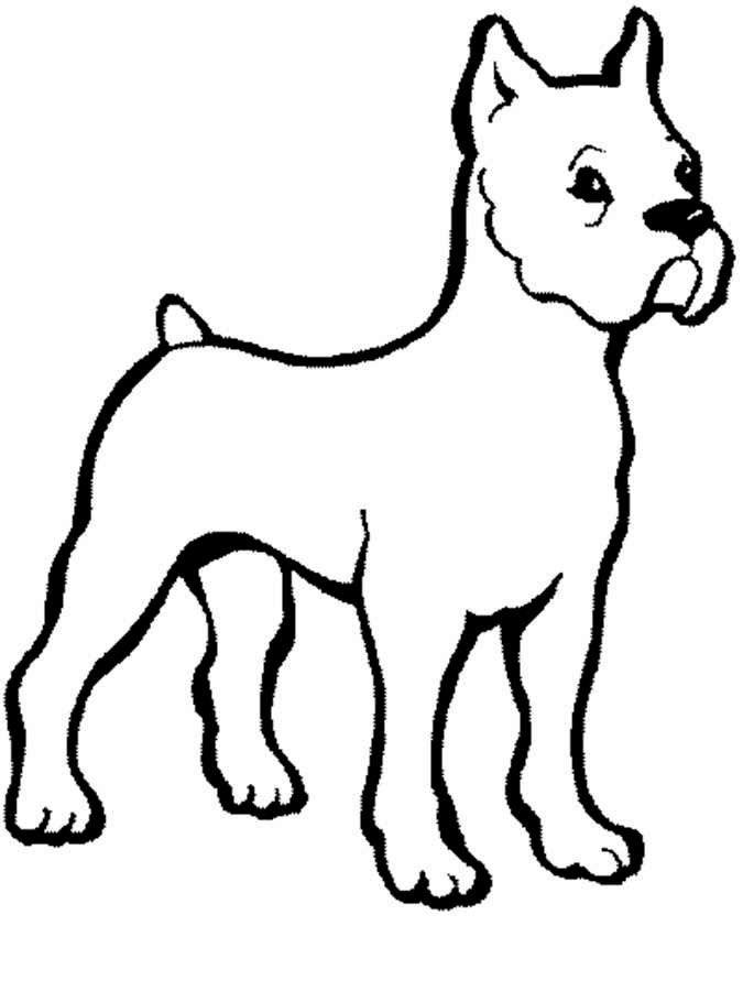 Раскраски для детей - собаки