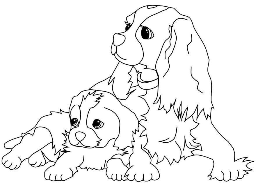 Распечатать раскраску для детей - собаки и щенки