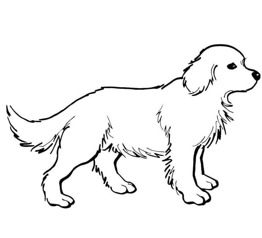 Раскраски про собак, для детей