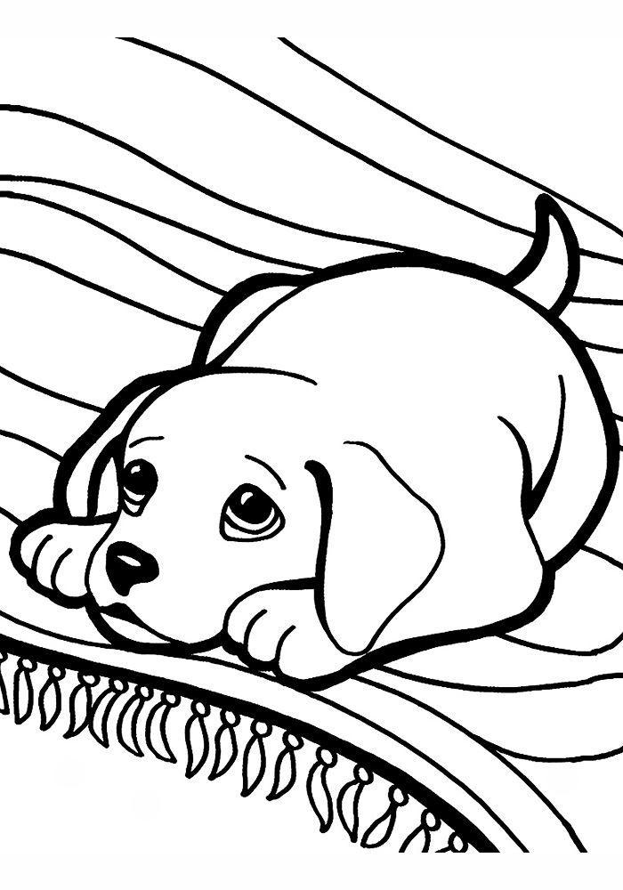 Раскраска щенок, для детей
