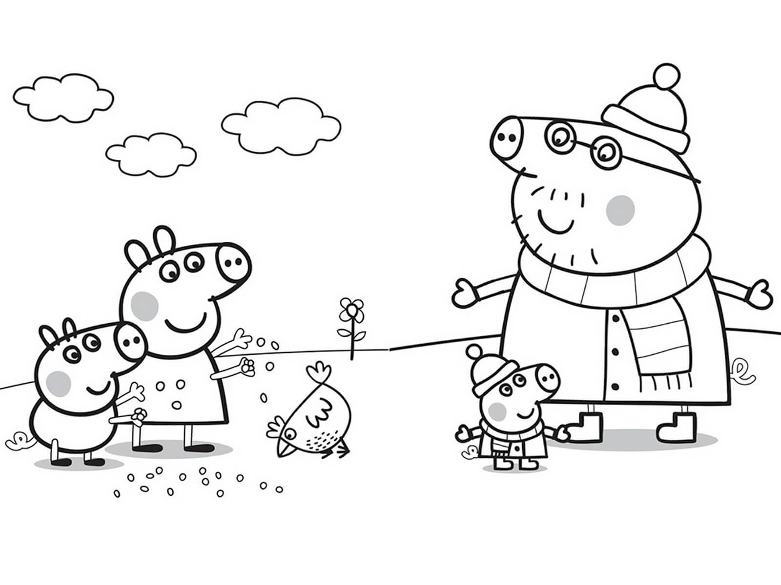 Раскраска свинка для детей