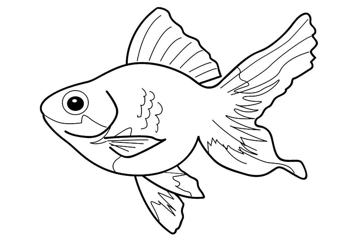 """""""Рыбки"""" раскраски для детей. Скачать, распечатать онлайн ..."""