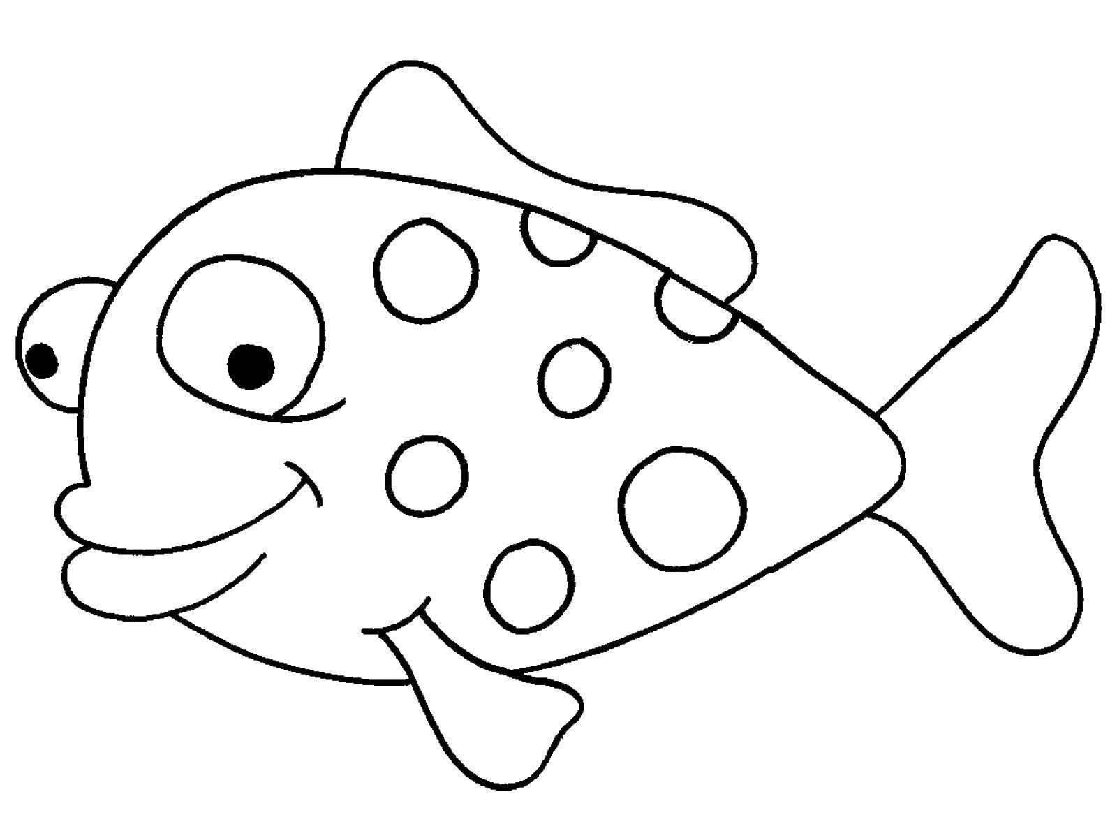 Распечатать раскраску рыбки, бесплатно
