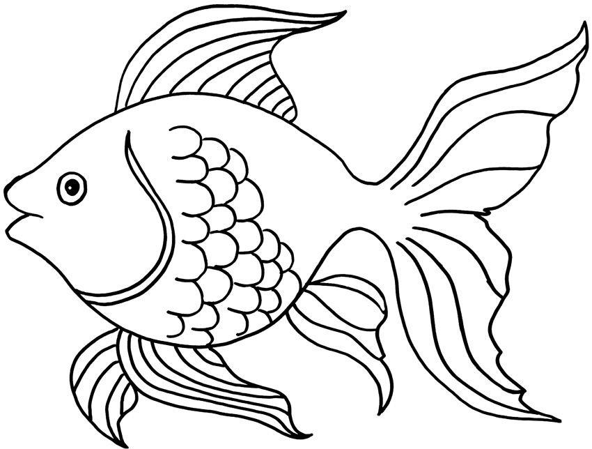 Распечатать раскраску рыбки, онлайн бесплатно