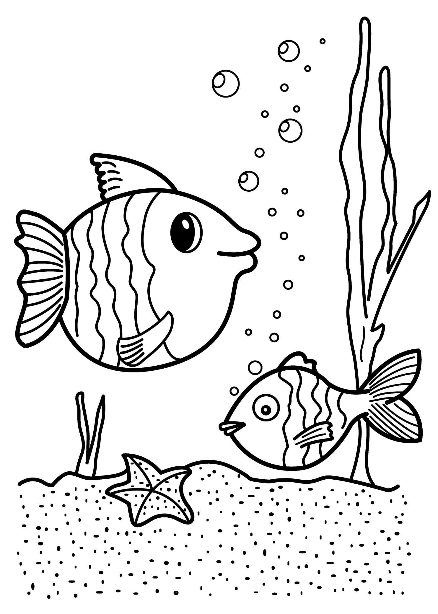 Картинки раскраски рыбки, для детей