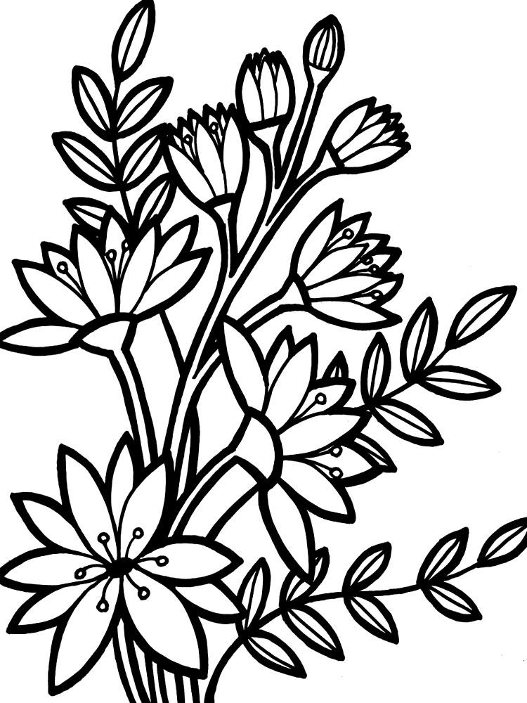 Цветы раскраска для детей, распечатать
