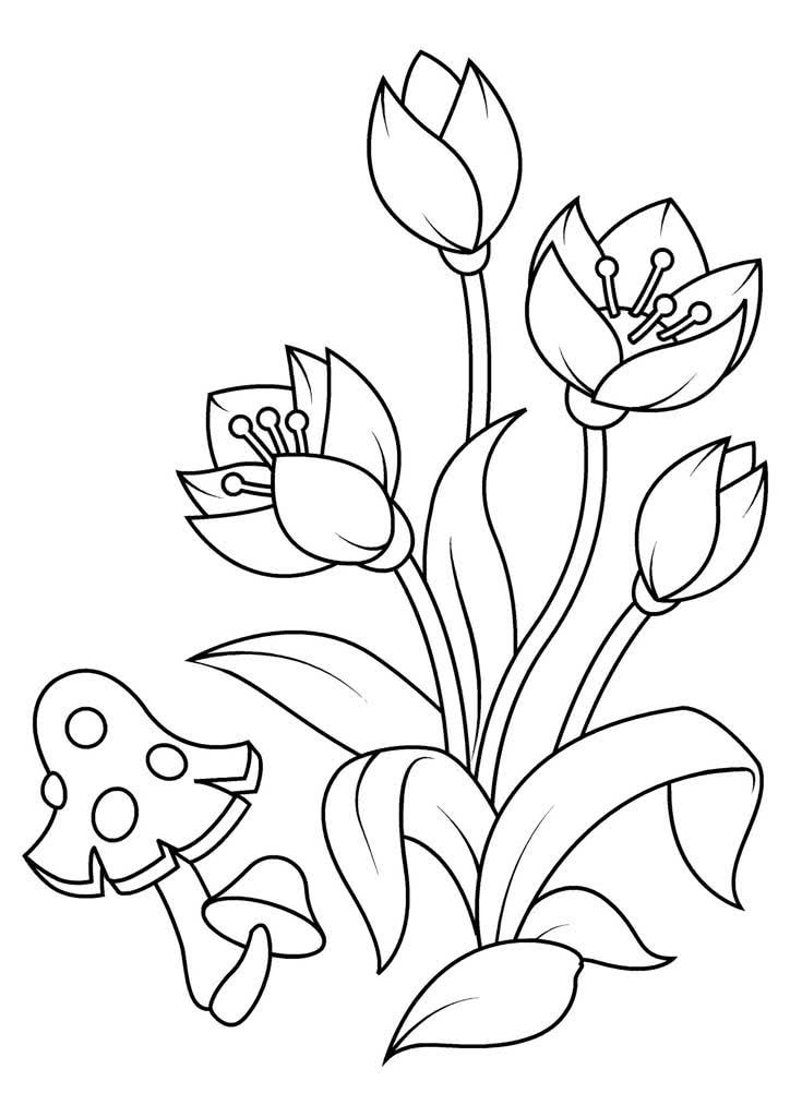 Раскраска цветы, распечатать онлайн бесплатно