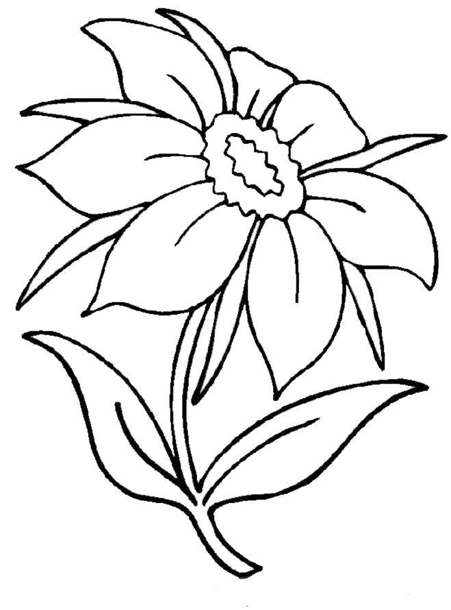 """""""Цветы"""" раскраски для детей. Скачать, распечатать онлайн ..."""