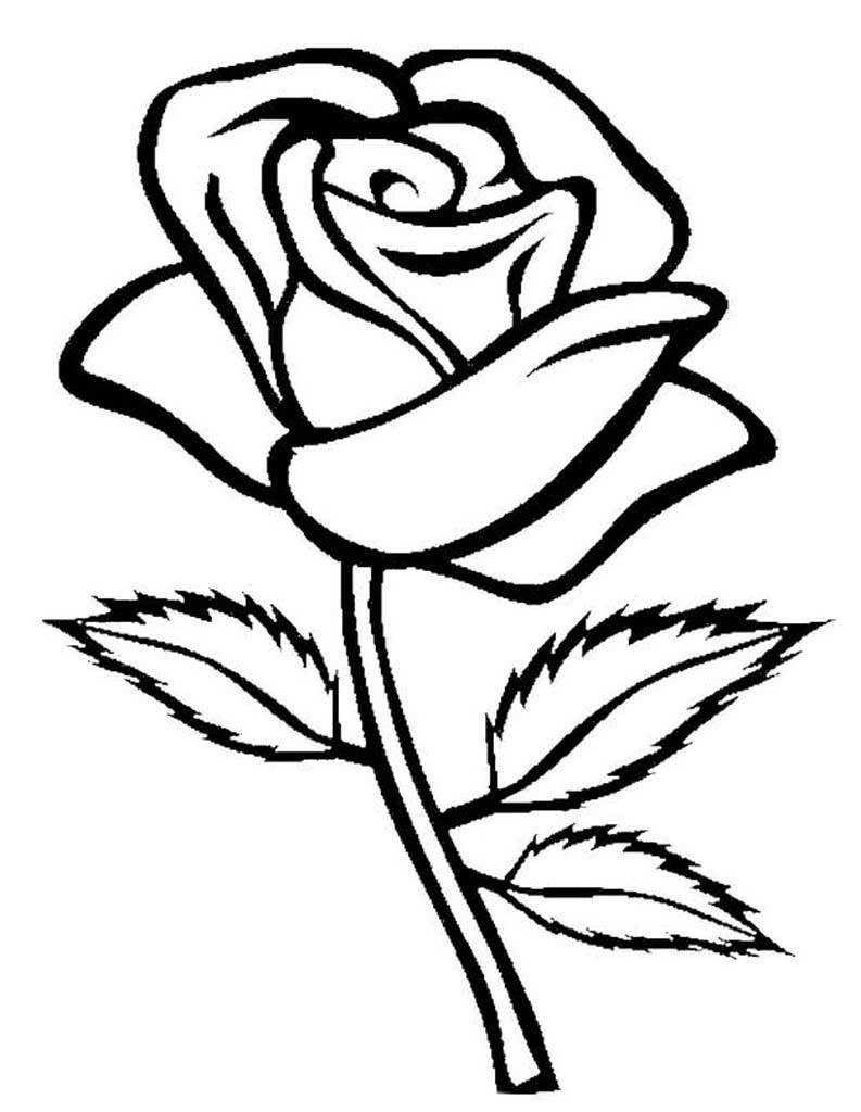 Раскраска цветы, распечатать