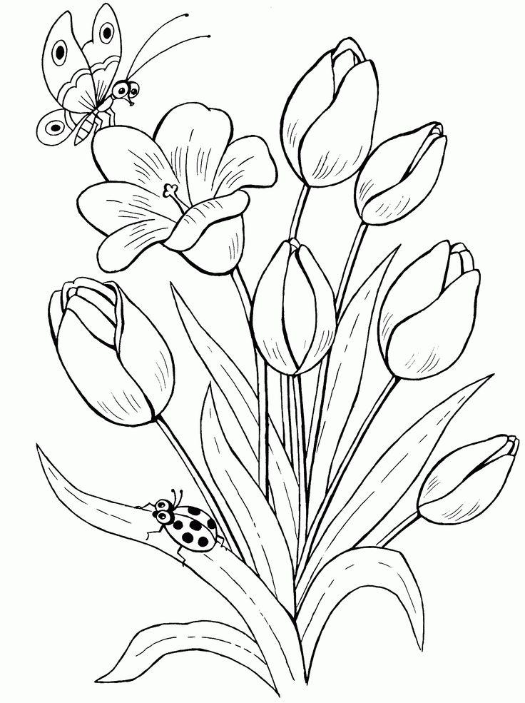 Раскраски цветы лета, для девочек и мальчиков