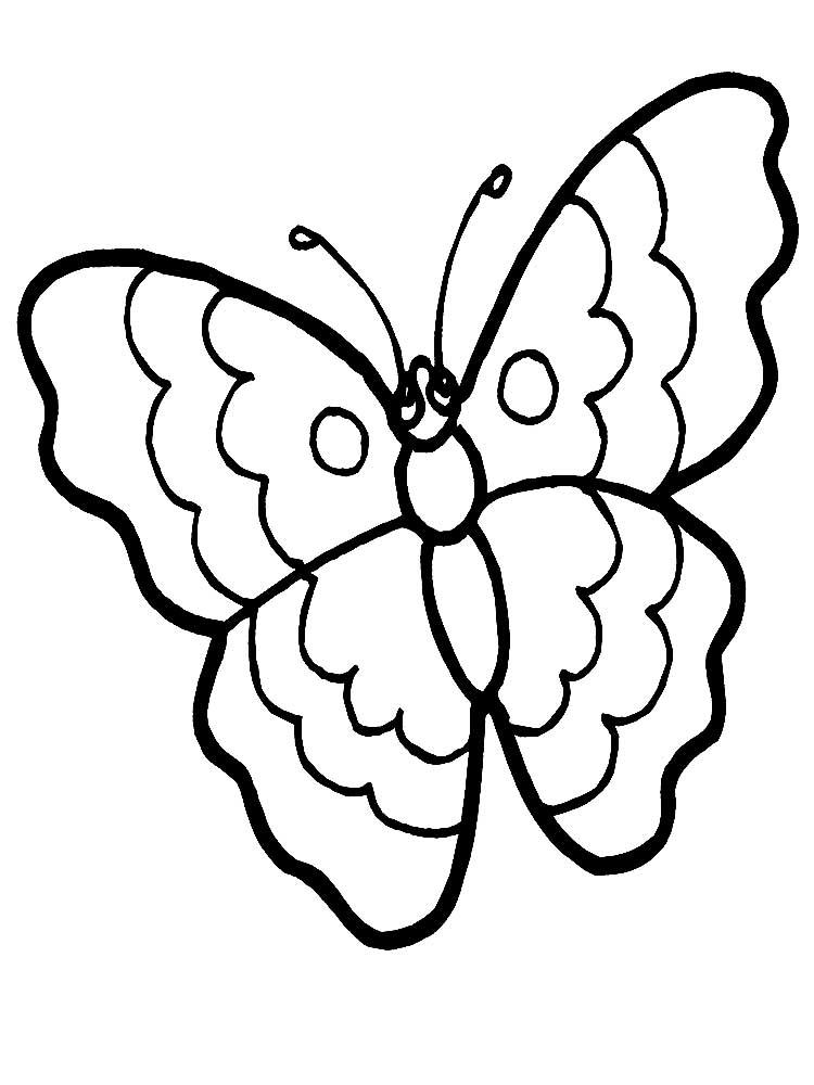 Картинка бабочка раскраска, скачать и распечатать бесплатно
