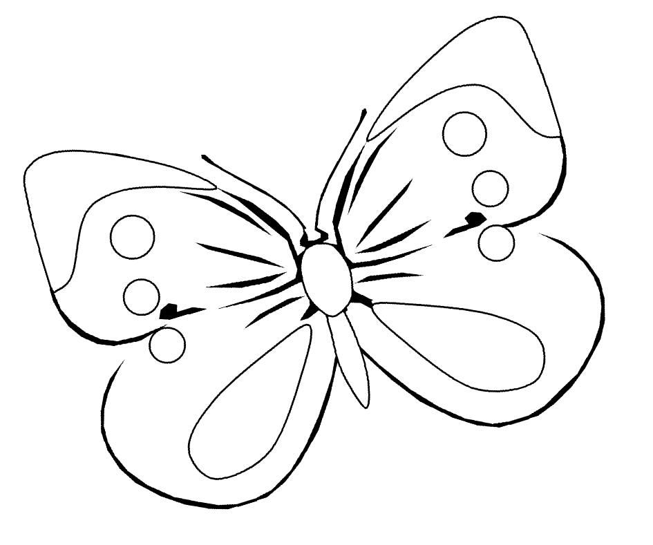 Раскраска бабочка, распечатать