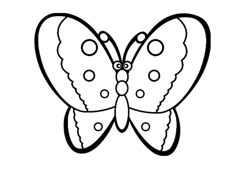 Распечатать раскраски бабочка, бесплатно