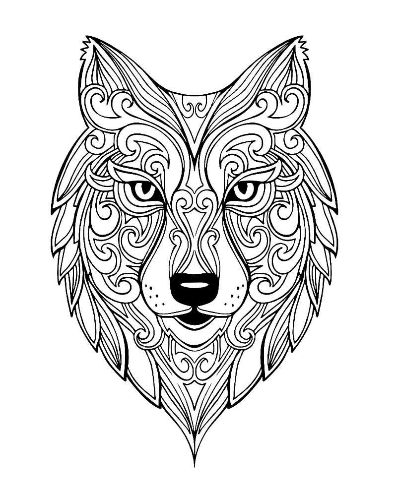 Раскраска антистресс - волк, распечатать бесплатно