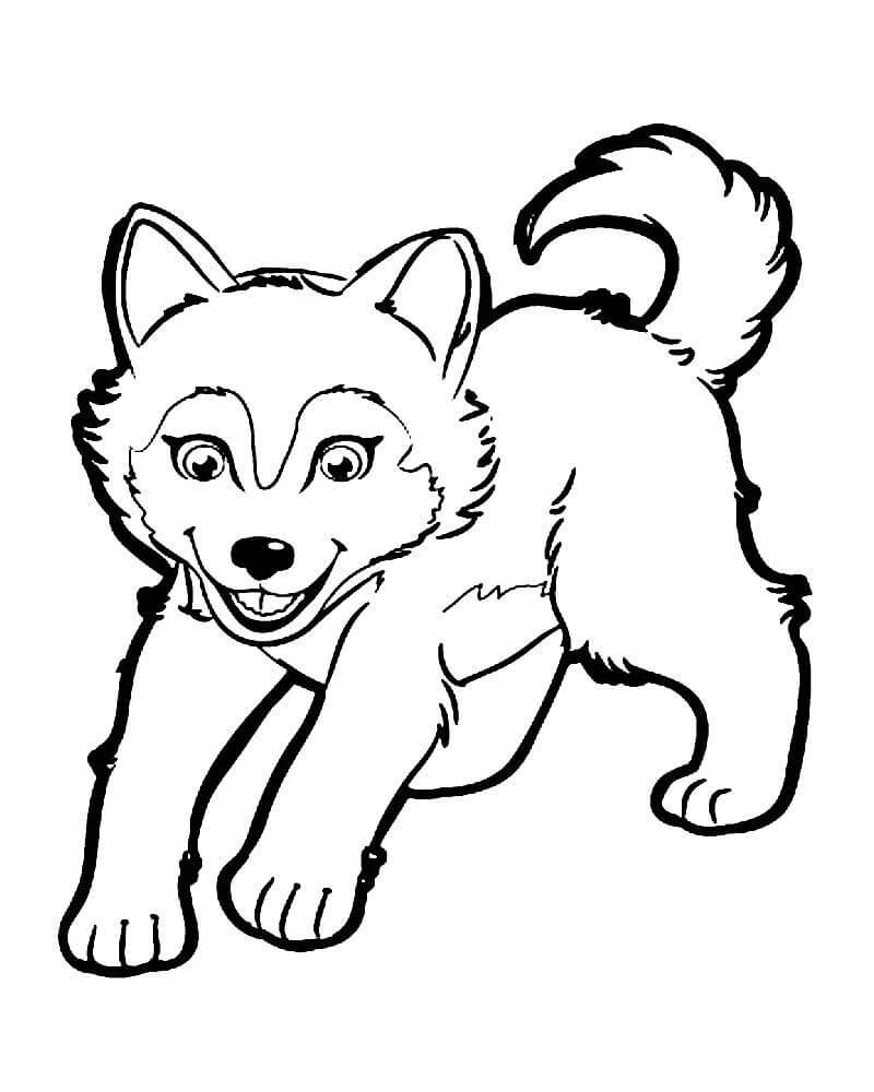 Скачать и распечатать раскраску - волк