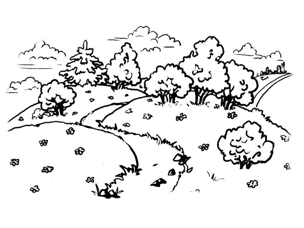 Раскраска пейзаж природы