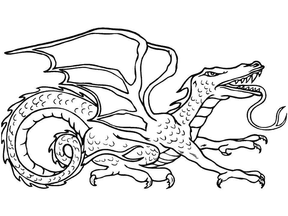 Картинка дракон раскраски