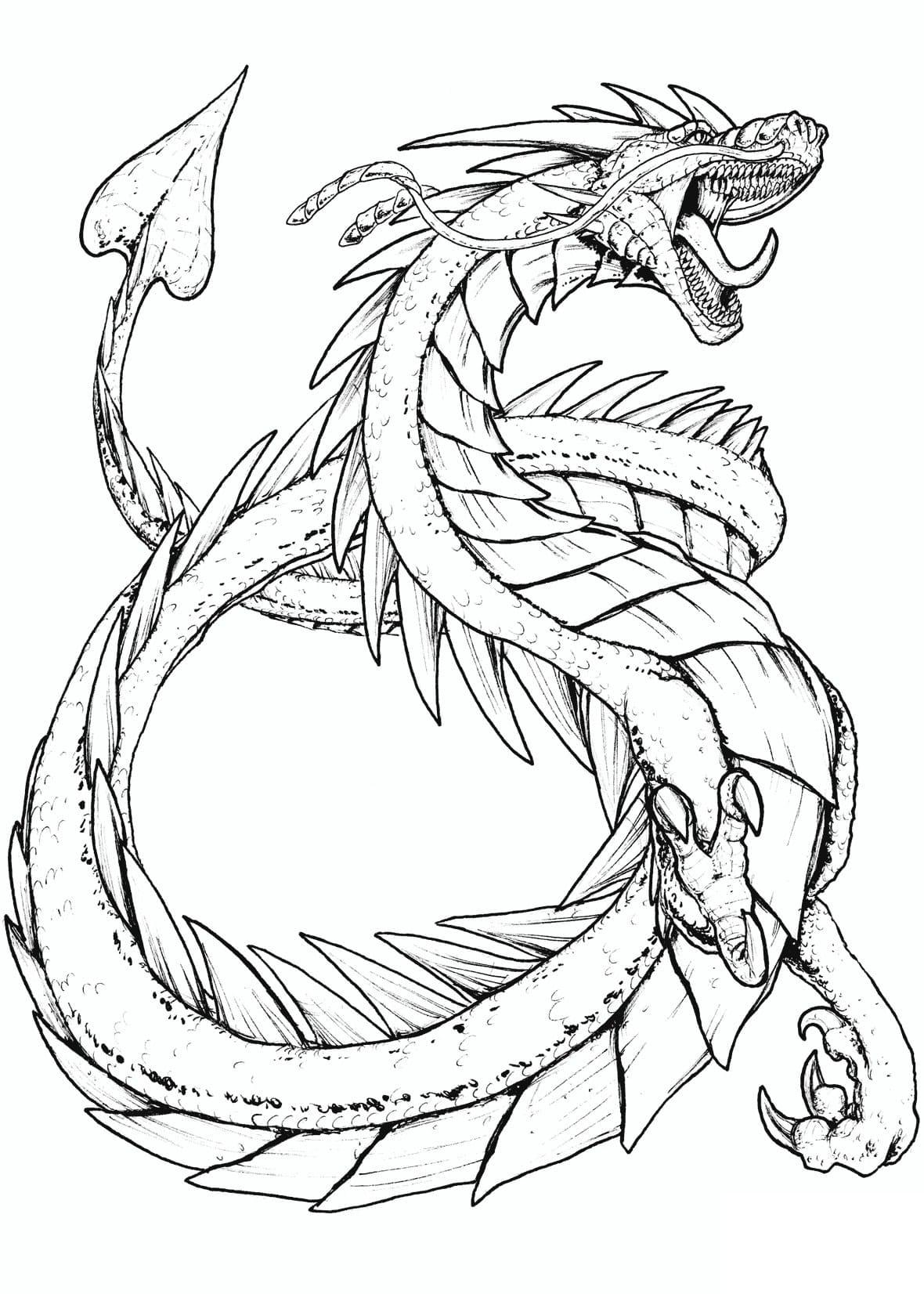 Распечатать раскраски дракон для мальчиков и девочек