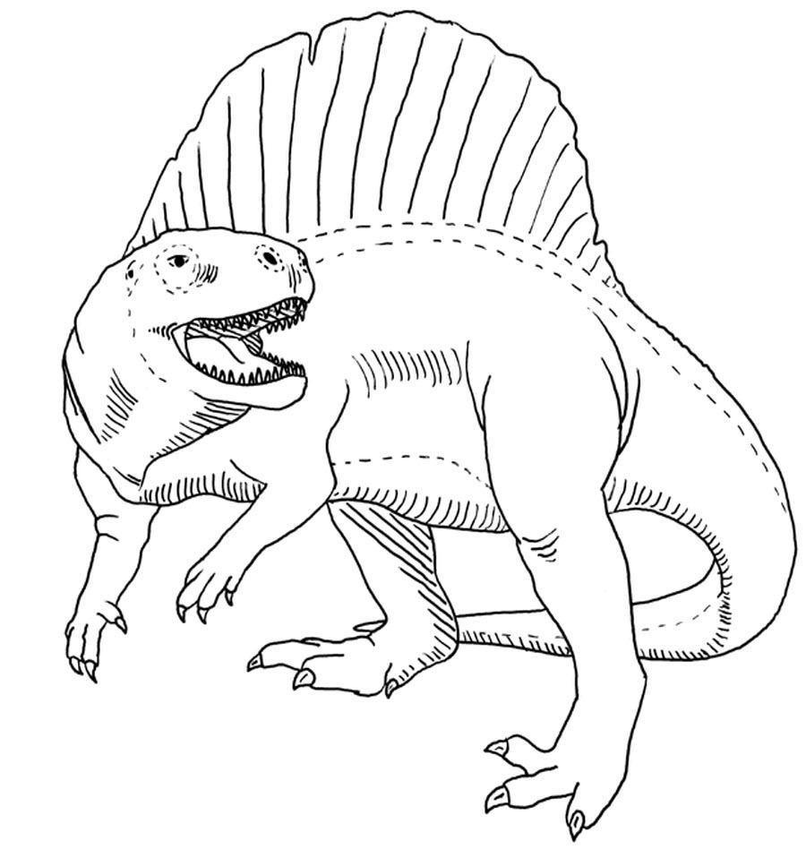 Раскраски для мальчиков и девочек динозавры, распечатать онлайн бесплатно