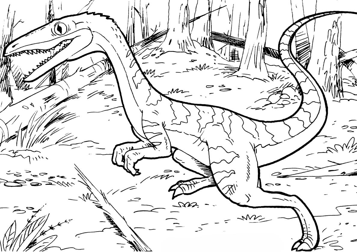 Раскраски динозавры, распечатать